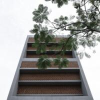 Ấn tượng với ngôi nhà được bao quanh bởi lưới chống côn trùng ở ngoại ô Sài Gòn