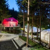 Lọt giữa rừng cây, resort đầy sang trọng và đẳng cấp thu hút khách tại Hàn quốc