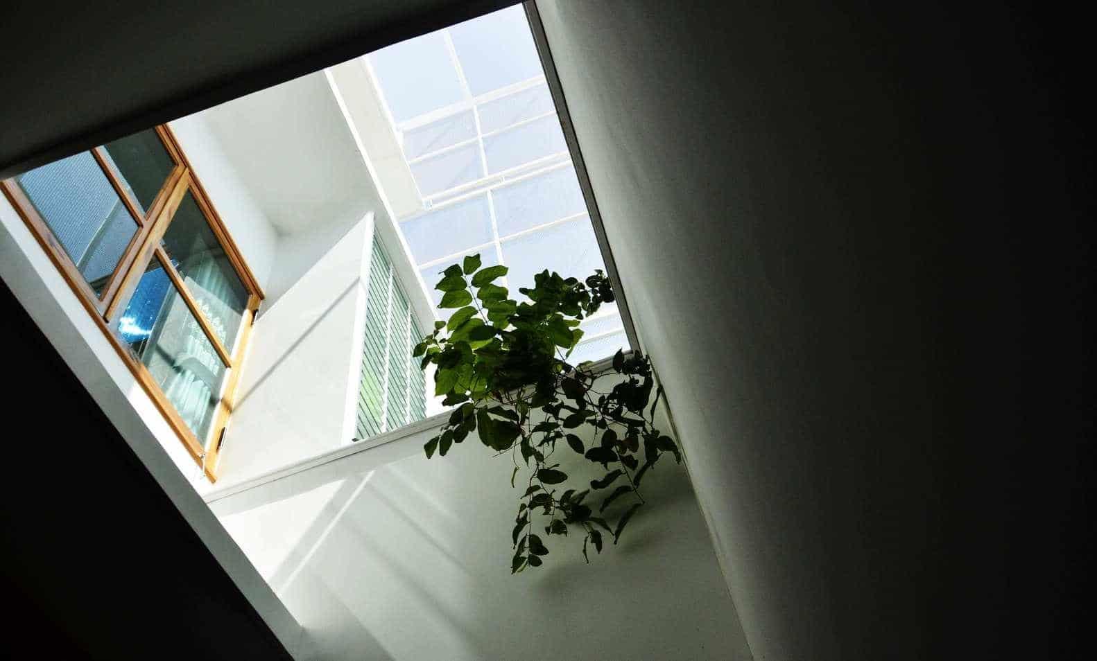 """thiet ke xanh don gian ma an tuong cua ngoi nha tai nha trang 2 - Thiết kế """"xanh"""" đơn giản mà ấn tượng của ngôi nhà tại Nha Trang"""