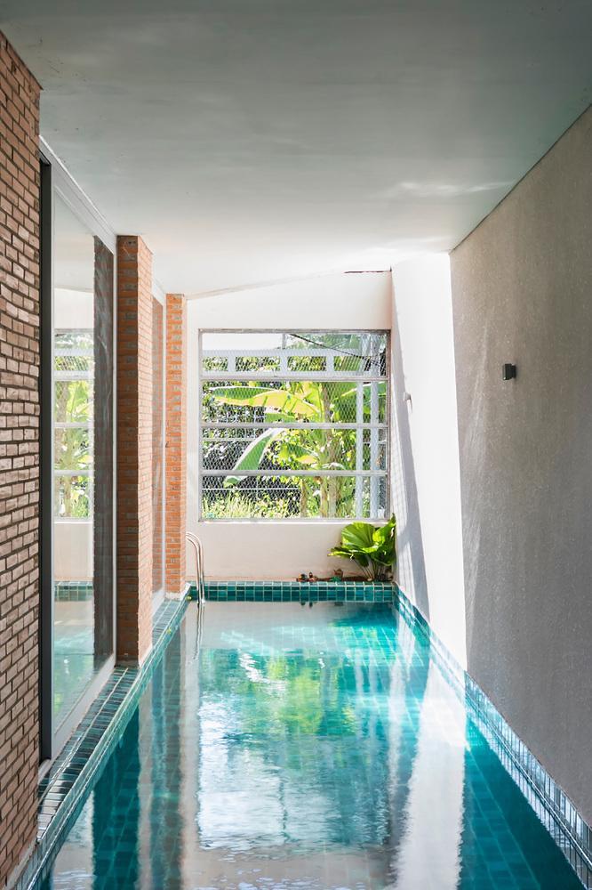 Bể bơi nằm theo chiều dọc căn nhà, có độ dài 11m.